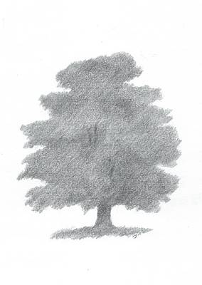 Painting - Oak Tree Drawing Number Six by Alan Daysh