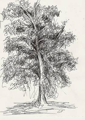 Painting - Oak Tree by Elise Palmigiani