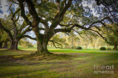 Photograph - Oaks At Oak Alley Plantation - Painting by Kathleen K Parker