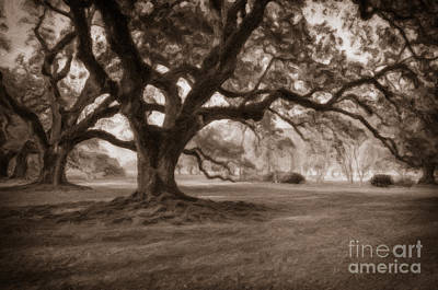 Photograph - Oaks Of Oak Alley Plantation - Digital Art by Kathleen K Parker