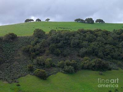 Photograph - Oaks On A Ridge by James B Toy