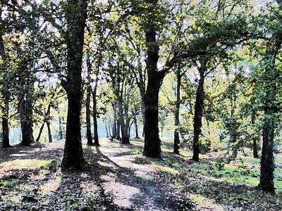 Oak Leaves Photograph - Oakwood Walk by Bishopston Fine Art