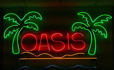 Photograph - Oasis by Denise Mazzocco