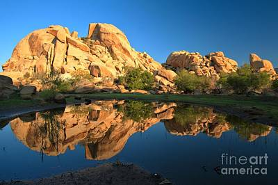 Oasis Reflections Art Print