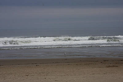 Photograph - Ocean - Beaches - 0058 by S and S Photo