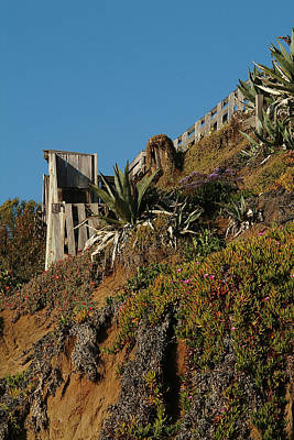 Photograph - Ocean Beach Hillside by Wesley Elsberry