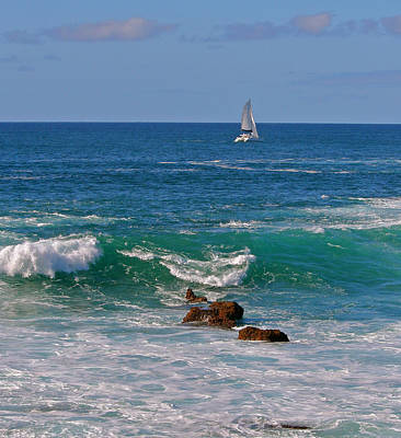 Photograph - Ocean Breeze by Kathleen Scanlan