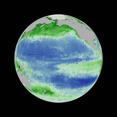 Ocean Chlorophyll Concentrations Art Print by Nasa/gsfc Ocean Ecology Lab