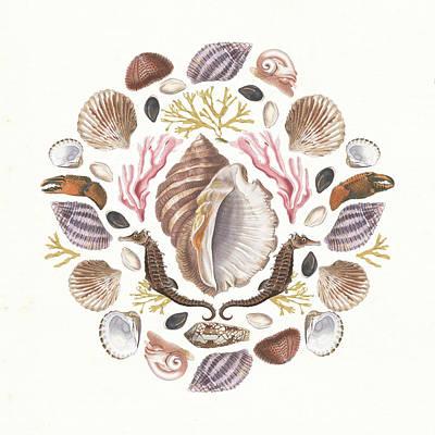 Hermit Crab Painting - Ocean Mandala IIi by Wild Apple Portfolio