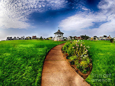 Photograph - Ocean Park Path by Mark Miller