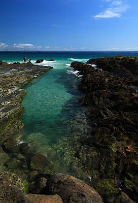 Photograph - Ocean Rockpool by Noel Elliot
