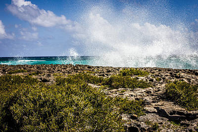Photograph - Ocean Spray by Sara Frank