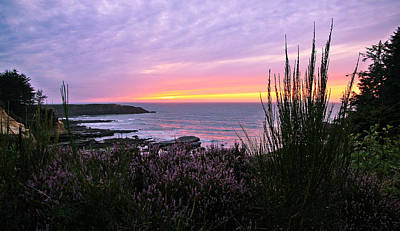 Photograph - Purple Ocean Sunset by Athena Mckinzie