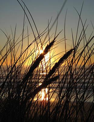 Photograph - Ocean Sunset by Luis Esteves