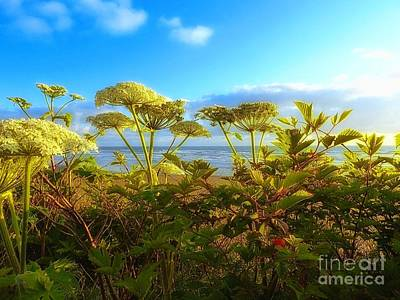 Ethereal Dreamy Ocean Photograph - Ocean View In Color by Lauren Leigh Hunter Fine Art Photography