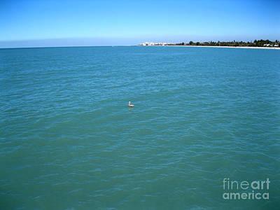 Photograph - Ocean View. Pelican by Oksana Semenchenko