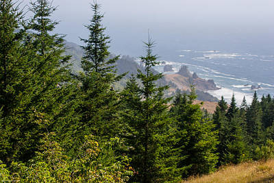 Photograph - Ocean Vista by Mick Anderson