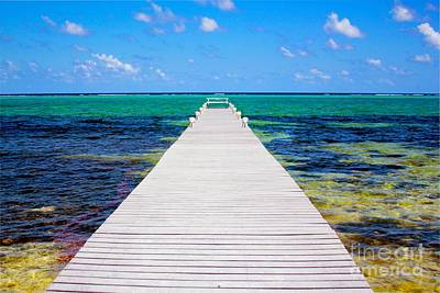 Reptiles Royalty-Free and Rights-Managed Images - Ocean walkway by Carey Chen