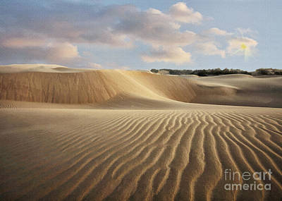 Photograph - Oceano Dune Trails by Sharon Foster
