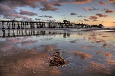 Oceanside Pier Seaweed Art Print by Peter Tellone