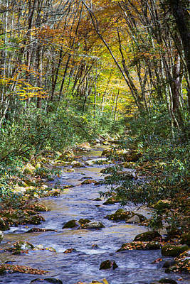 Photograph - Oconaluftee River In The Gsmnp by John Haldane
