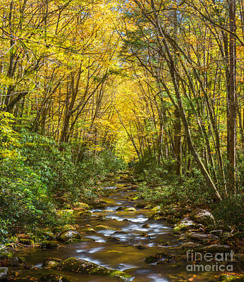 Photograph - Oconaluftee Splendor by Carl Amoth