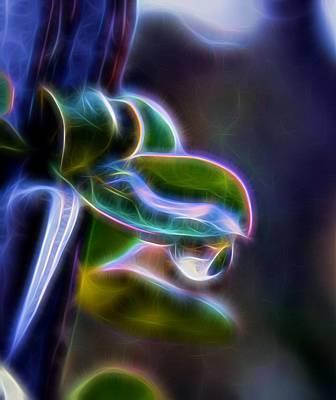 Andrea King Digital Art - Ocotillo After The Rain by Andrea King