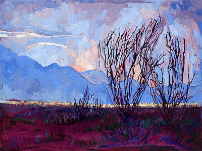 Painting - Ocotillo On Blue by Erin Hanson