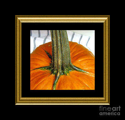 Photograph - October Gift. Classic Black And Golden Frame by Oksana Semenchenko