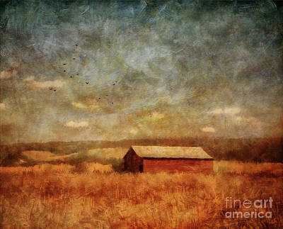 Photograph - October Afternoon by Lois Bryan