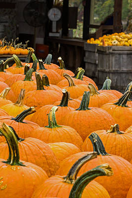 Halloween Photograph - October At The Farm - Pumpkins by Photographic Arts And Design Studio