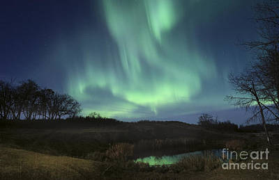 October Aurora Art Print by Dan Jurak