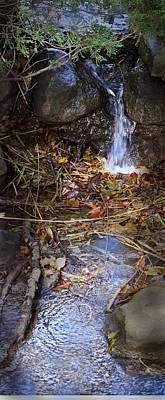 Photograph - October Brook by Ian  MacDonald