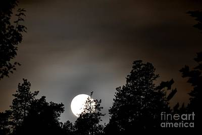 October Full Moon I Art Print by Phil Dionne