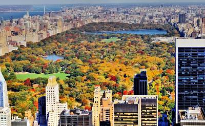 Skylines Royalty-Free and Rights-Managed Images - October Glow In Central Park Manhattan Skyline by Dan Sproul