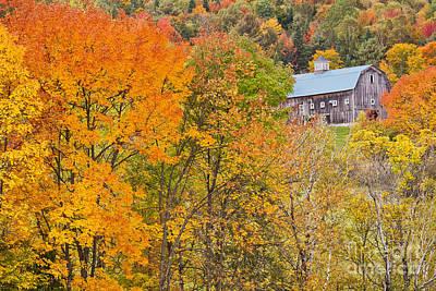 Photograph - October Hillside Barn by Alan L Graham