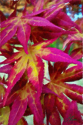 Signed By Artist Photograph - October Leaves  by Joan Reese