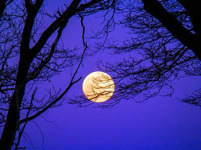 Photograph - October Moon by Heather Sylvia