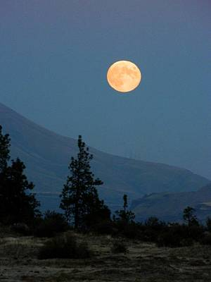 Photograph - October Moonrise by Jacqueline  DiAnne Wasson