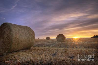 Alberta Landscape Photograph - October Morning by Dan Jurak