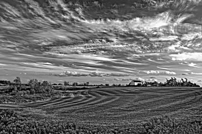 Steve Harrington Photograph - October Patterns Bw by Steve Harrington