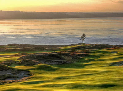 Photograph - October Solitude - Chambers Bay Golf Course by Chris Anderson