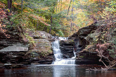 Photograph - October Sprinkle On Murray Reynolds Falls by Gene Walls