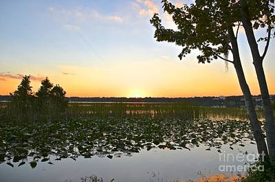 Photograph - October Sunset by Carol  Bradley