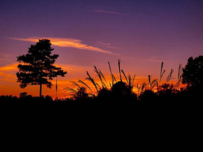 Photograph - October Sunset by Jean Wright
