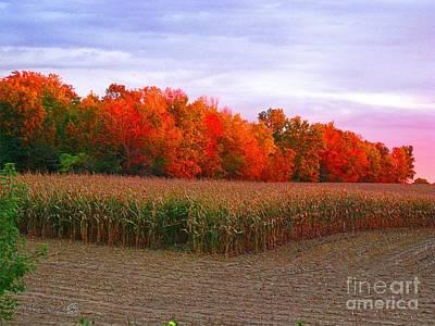 Cornfield Digital Art - October Sunset On The Autumn Woods by J McCombie