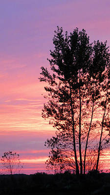 Photograph - October Sunset by Patricia Januszkiewicz