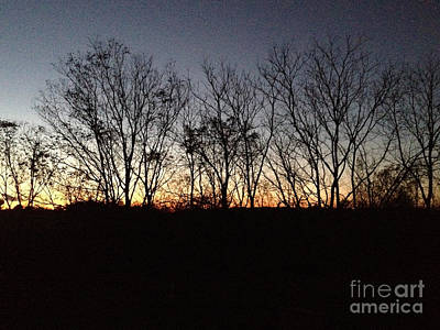 Photograph - October Sunset Trees Silhouettes by Conni Schaftenaar