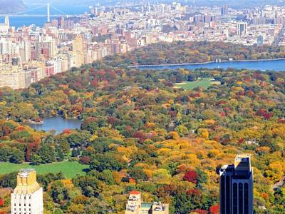 Photograph - October View Of Central Park by Dan Sproul