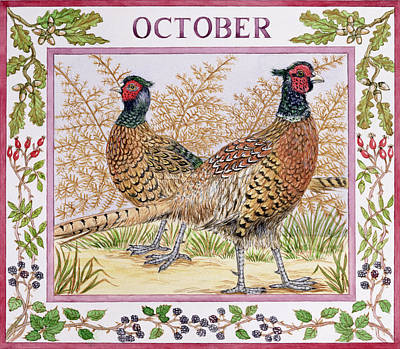 Pheasant Photograph - October Wc On Paper by Catherine Bradbury